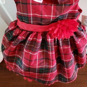 Black & Red Plaid Dress